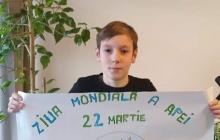 Clasă a III-a B, Școala Nichita Stănescu, Baia Mare, prof. Marinescu Marinica Maria