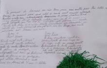 "clasa a IV-a D, de la Scoala Gimnaziala ""George Cosbuc"" Baia Mare, prof.pt.inv.primar Hosciuc Lacramioara"